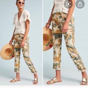 Anthropologie Chino Floral Tropical Pants 28 Cream